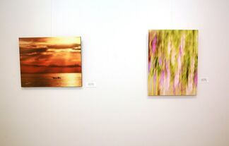 Reflections and Motions of Photography, installation view