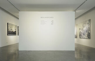 New Landscapes, installation view