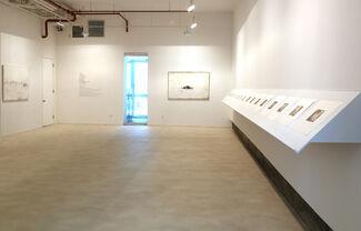 Yan Shanchun: West Lake, installation view