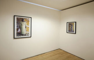 Leonce Raphael Agbodjelou, From Dahomey To Benin, installation view