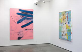 Bruno Dunley, installation view