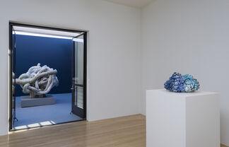 Matt Wedel: Peaceable Fruit, installation view