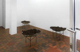 Björn Braun, installation view