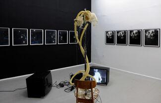 KOENIG2 Felix Burger. Weißer Zwerg, installation view