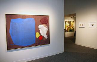 diversity, installation view