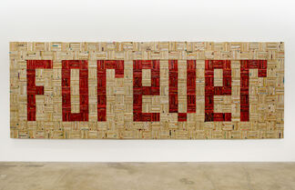 The Bass Projects - John Salvest: Forever, installation view