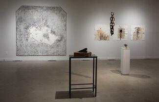 Peter von Tiesenhausen ' Ever Widening Rings', installation view