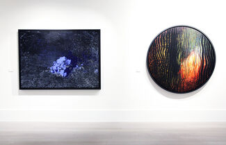 Pooya Aryanpour: Under the Shell, installation view