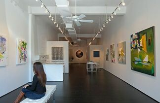 Abstract Thinking, installation view