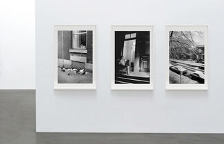 Introducing Rejean Meloche at ThePrintAtelier, installation view