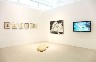 You've Got to Know the Rules... to Break Them, installation view