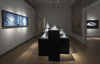 Ali Emir Tapan, 'Perfect Day', installation view