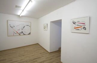 Zsófi Barabás' Exhibition: Urban Histology, installation view