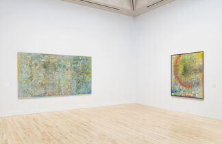 Frank Bowling, installation view