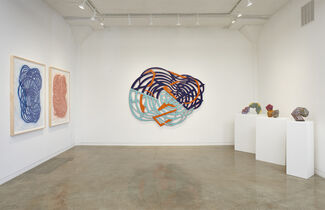 Linda Fleming: Aerious, installation view