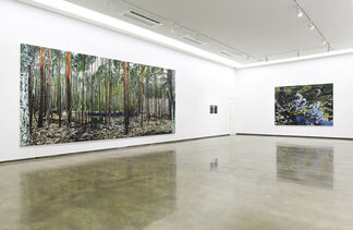Bin Woo Hyuk: Luftwald, installation view