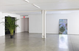 Gabriel Lester: If you happen to be, installation view