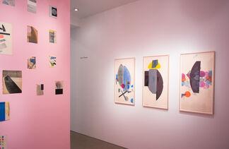 Austin Thomas, installation view