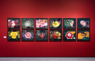 Michael Hoppen Gallery at Photo London 2020, installation view