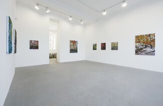 Robert Terry: The Landscape, installation view