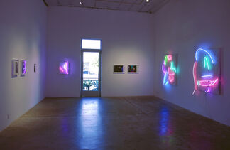 Brandon Andrew: The Roughs, installation view