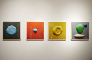 Photographic Drawings, installation view