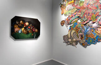 BARELY IMAGINED BEINGS, installation view
