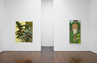 Forces of Nature curated by Hilton Als, installation view