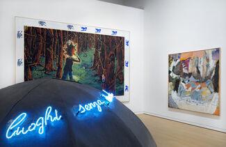 Excitement - An Exhibition by Rudi Fuchs, installation view
