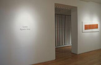 Limit by Agustin Sirai, installation view