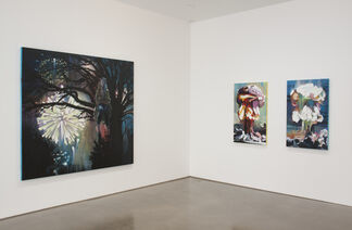 A Wolf in Sheep's Clothing, installation view