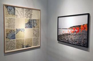 CYNTHIA-REEVES at Art New York 2017, installation view