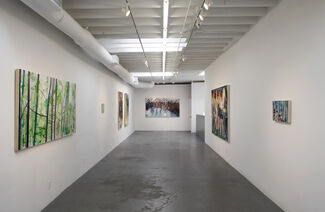 Stephanie Pryor: New Work, installation view