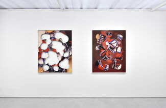 Kate Steciw, installation view