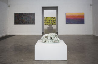 Preoccupations, installation view