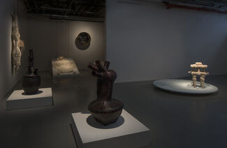 Erez Nevi Pana: Consciousness, installation view