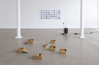 Liliana Moro - Réaction #3, installation view