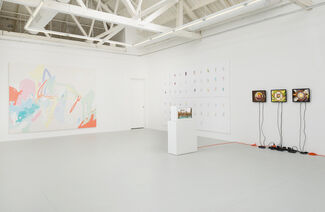 Cheap Vacation, installation view