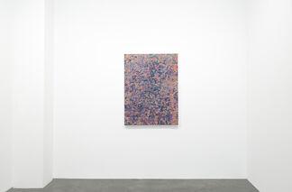 David Allan Peters, installation view