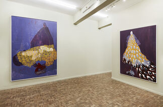 What I See Beyond Feeling, installation view