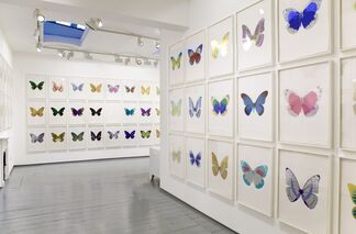 Damien Hirst - The Souls, installation view