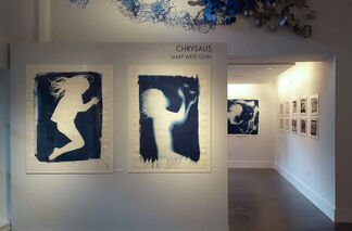 CHRYSALIS: Mary West Quin, installation view