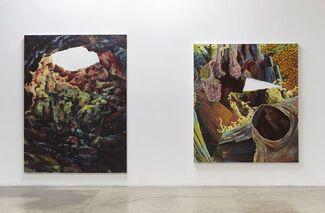 Alexandra Wiesenfeld: when i when if when lie when life (Xavier Villaurrutia), installation view