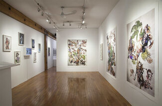 DOMINIQUE PAUL: Playing Fields, installation view