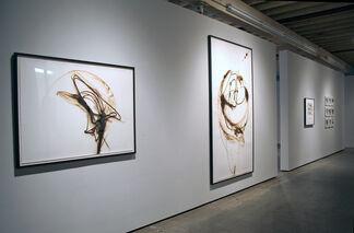"""Etsuko Ichikawa : """"Act of Drawing"""", installation view"""