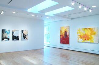 Matter by Ivan Toth Depeña, installation view