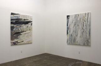 Ryan Wallace: Redactor, installation view