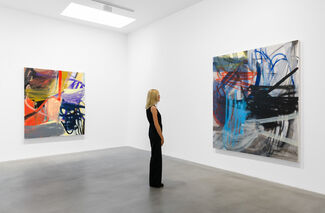 a dream of, installation view