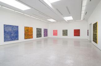 Evan Nesbit: /ˈkaɪˑæzəm/, installation view