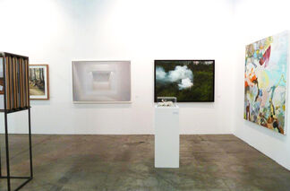 Alberto Peola at Artissima 2015, installation view